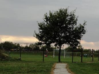 ... nu va opri copacul ăsta să-i spună băţului de corner că el stă acolo orice ar fi.